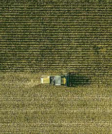 Investimentos Agricultura